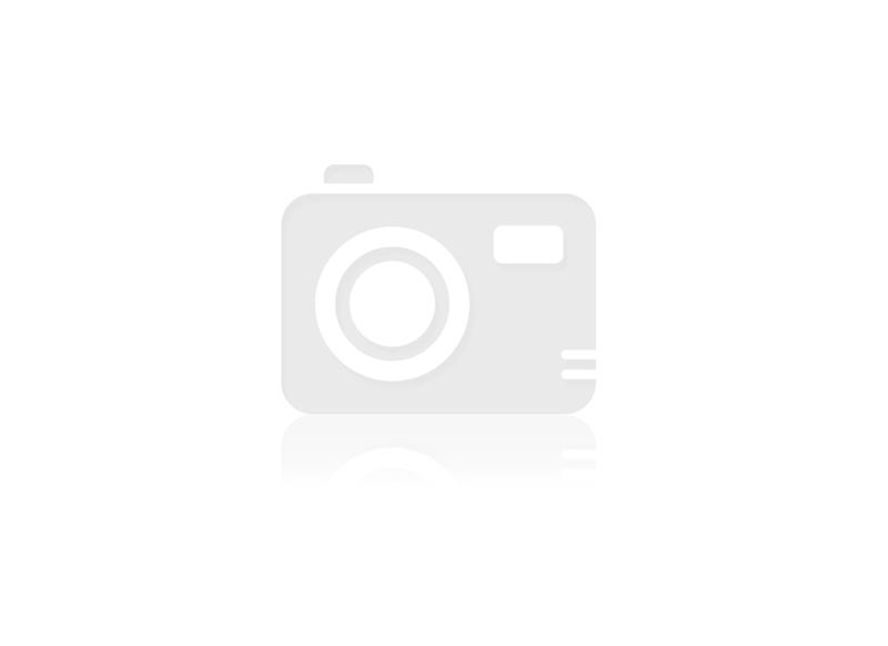Propolis Tinktur 20ml 30%